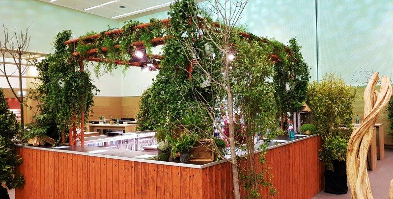 Pflanzen Bartheke